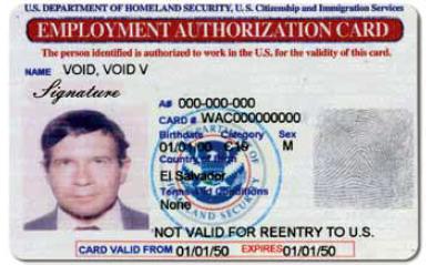 Employment Authorization Cards