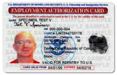 Employment Authorization Cards Olender